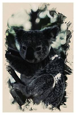 Animal Kingdom Series - Koala Art Print