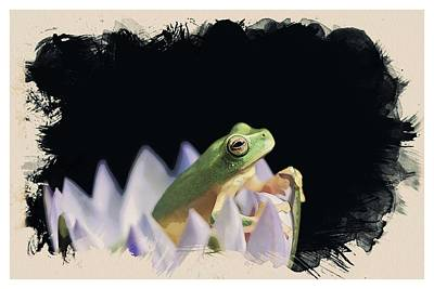 Background Painting - Animal Kingdom Series - Tropical Rainforest Frog by Celestial Images
