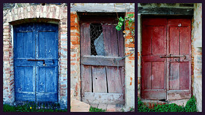Photograph - Animal Room Doors by Dorothy Berry-Lound