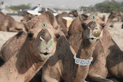 Camel Digital Art - Animal Royalty 5 by Sumit Mehndiratta