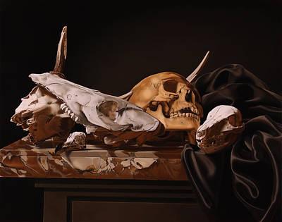 Animal Skulls Original