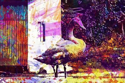 Digital Art - Animal Swan Video High Chou  by PixBreak Art
