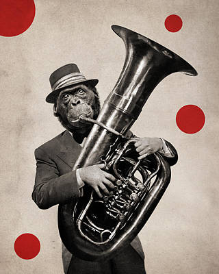 Surrealist Photograph - Animal17 by Francois Brumas