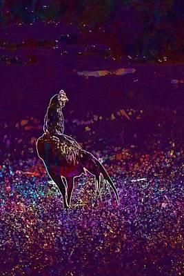 Digital Art - Animals Bidd In The Country Chicken  by PixBreak Art
