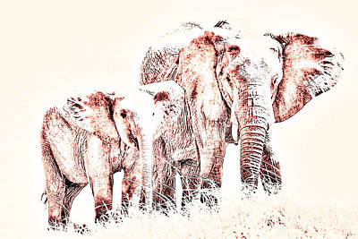 Photograph - Animals Of The Rainbow Elephants by Aidan Moran