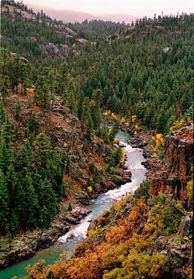 Photograph - Animas River Colorado by Robert Woodward