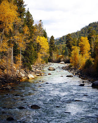 Photograph - Animas River by Kurt Van Wagner