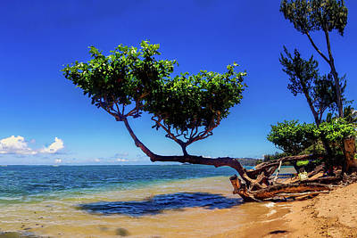 Photograph - Anini Beach 5 by Gordon Engebretson