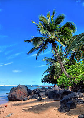 Photograph - Anini Beach by Brad Granger