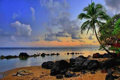 Photograph - Anini Beach Honu by DJ Florek