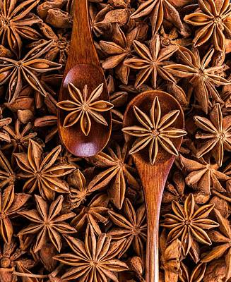 Photograph - Anise For Christmas by Jennifer Baulch