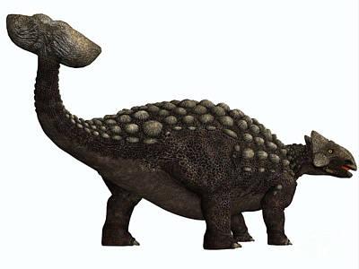 Ankylosaurus On White Print by Corey Ford
