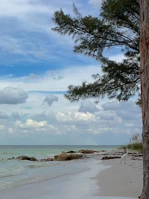 Photograph - Anna Maria Island  by Jean Marie Maggi