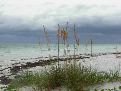 Photograph - Anna Maria Island by Amanda Vouglas