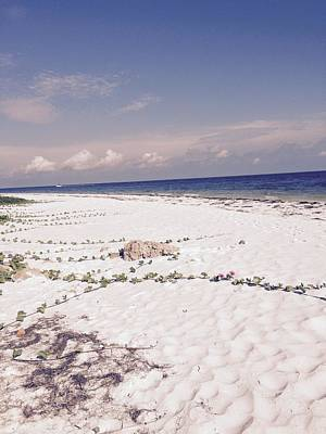 Photograph - Anna Maria Island Beyond The White Sand by Jean Marie Maggi