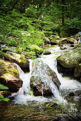 Photograph - Anna Ruby Falls by Erika Weber