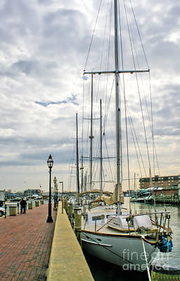 Photograph - Annapolis Harbor  by Richard Lynch