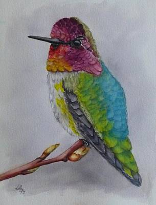 Painting - Anna's Hummingbird by Kelly Mills