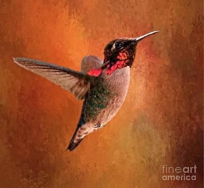 Digital Art - Annas Hummingbird by Suzanne Handel