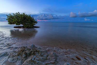 Florida Nature Photograph - Anne's Beach Sunrise by Stefan Mazzola
