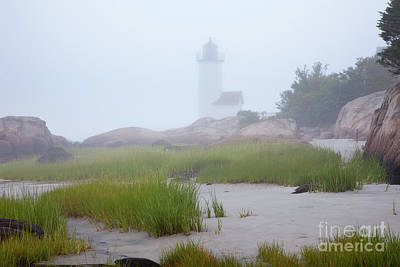 Photograph - Annisquam Light In The Fog by Susan Cole Kelly