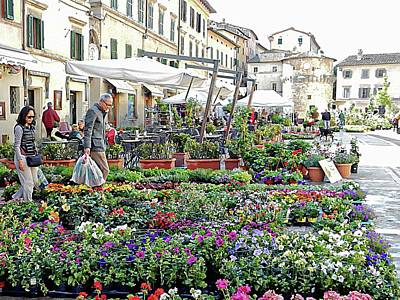 Photograph - Annual Flower Market Cetona Tuscany by Dorothy Berry-Lound