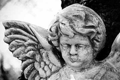 Photograph - Another Angel In The Garden by Beverly Stapleton