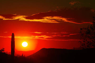 Photograph - Another Beautiful Arizona Sunset by James BO Insogna