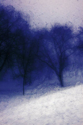 Julia Lueders Photograph - Another Blue Day by Julie Lueders