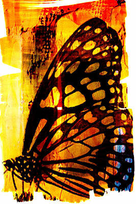 Digital Art - Another Butterfly by Andrea Barbieri