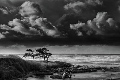 Print featuring the photograph Another Day At Kalaloch Beach by Dan Mihai
