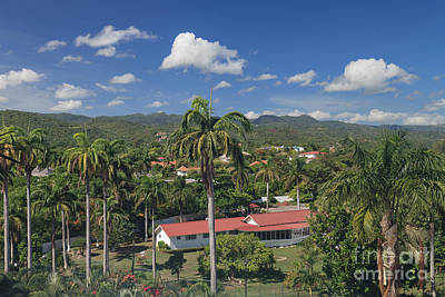 Photograph - Another Fine Day In Jamaica by Charles Kozierok