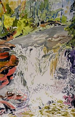 Another Look At The Temperance Falls Art Print by Patricia Bigelow