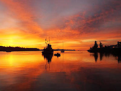 Photograph - Another Morning by Mark Alan Perry