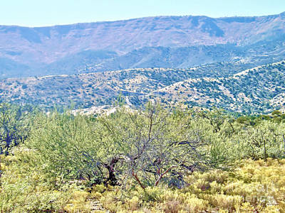 Photograph - Another Mountain Side View by Jym Wells