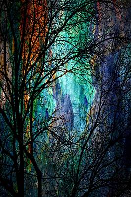Digital Art - Another Night In The Canyon by Barbara Chichester