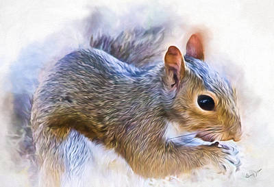 Photograph - Another Peanut Please - Squirrel - Nature by Barry Jones
