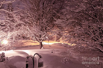 Christmas Holiday Scenery Photograph - Another Snow Storm by Claudia M Photography
