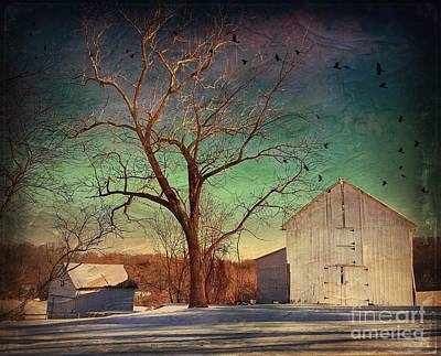 Photograph - Another Winter Day  by Delona Seserman
