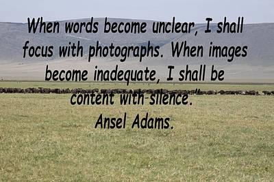 Bicycle Patents - Ansel Adams Quote by Tony Murtagh