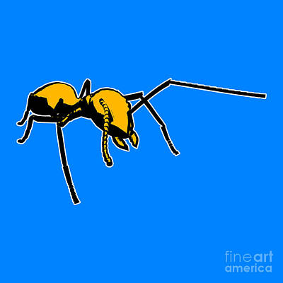 Ant Painting - Ant Graphic  by Pixel  Chimp