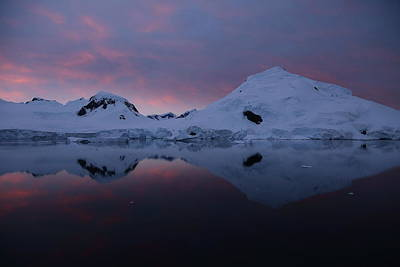 Photograph - Antarctic Sunrise by Bruce J Robinson