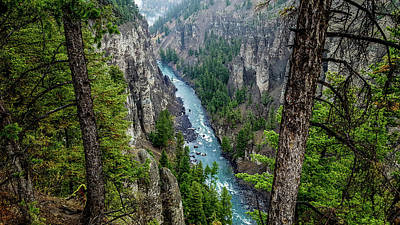 Photograph - Antelope Creek, Yellowstone by Marilyn Burton