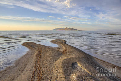 Photograph - Antelope Island by Spencer Baugh
