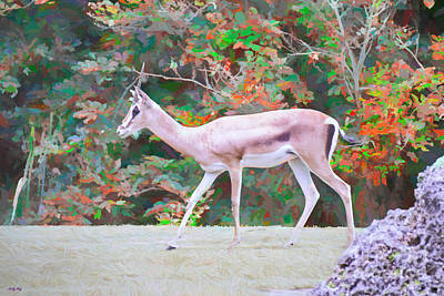 Painting - Antelope On The Move by Judy Kay