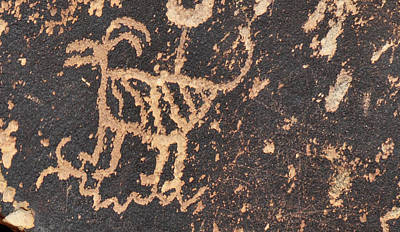 Photograph - Antelope Petroglyph by David Arment