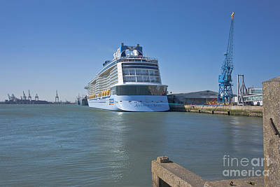 Photograph - Anthem Of The Seas Southampton by Terri Waters