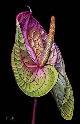 Painting - Anthurium by Dietrich Moravec