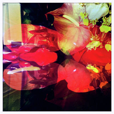 Photograph - Anthurium Fantasy 2 by Ann Tracy
