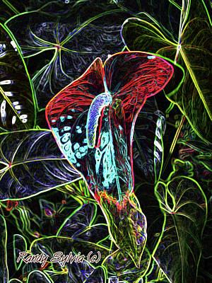 Photograph - Anthurium by Randy Sylvia